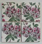 4 Ceramic Coasters in Laura Ashley Adeline Purple Flowers